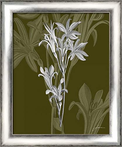 Jewel Stems II 20x24 Silver Contemporary Wood Framed Canvas Art by Burghardt, ()