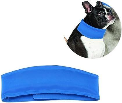 Pawaca Collar refrigerante para mascotas, Correa de perro ...