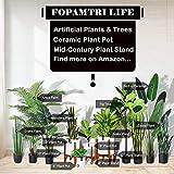 Fopamtri Artificial Fiddle Leaf Fig Tree 30 Inch