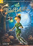 img - for Disney Fairies Graphic Novel #12: Tinker Bell and the Lost Treasure book / textbook / text book