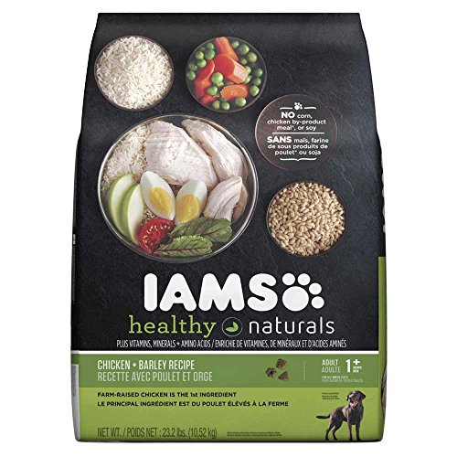 Iams Healthy Naturals Adult Chicken And Barley Recipe Dry Dog Food 23.2 Pounds Review