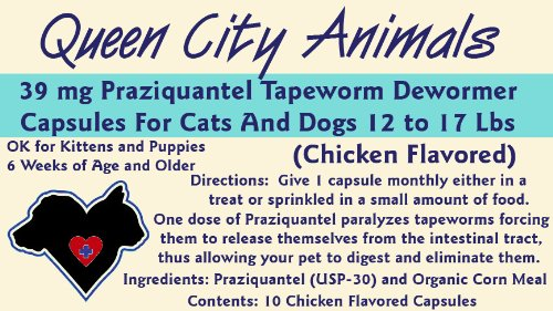 Queen City Animals Chicken Flavored Praziquantel Tapeworm Wormer Capsules For Dogs And Cats 12 – 17 Pounds. Ten (10) Capsules. The Same Active Ingredient As The Major National Brands! Not For Little Dogs And Cats, My Pet Supplies