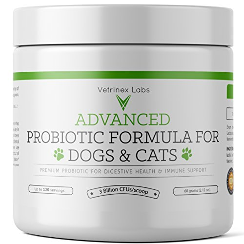 Cheapest Probiotics for Dogs and Cats - 120 Servings - Dog & Cat Probiotic Powder with Prebiotic for Diarrhea, Skin & Yeast Infection Treatment, Coprophagia, Poop Eating Deterrent & Prevention, Allergy Relief Check this out.