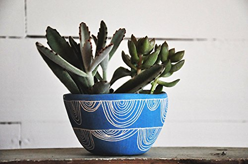 Pottery Patterned - Vibrant Blue Arc Garland Table Planter - Hand Carved Ceramic Succulent Planter - Organic Pinched Pot w/ Sgraffito Patterned Surface - Blue & White Earthenware Planter