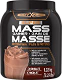 Body Fortress Mass Gainer Chocolate