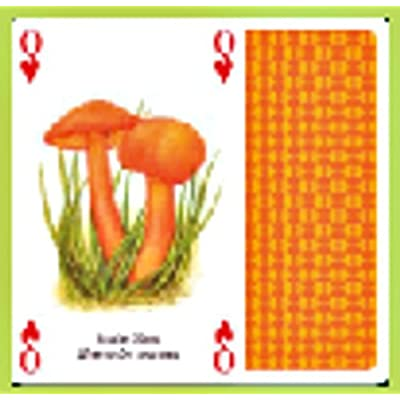 The Famous Mushrooms Playing Cards: Toys & Games