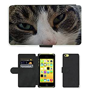 Hot Style Cell Phone Card Slot PU Leather Wallet Case // M00115713 Cat Animals Eyes Pet Look // Apple iPhone 5C