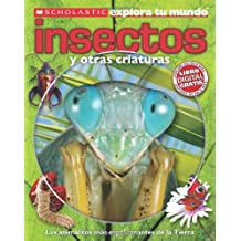 Insectos / Bugs