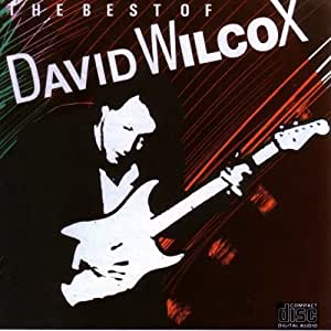 The Best Of David Wilcox