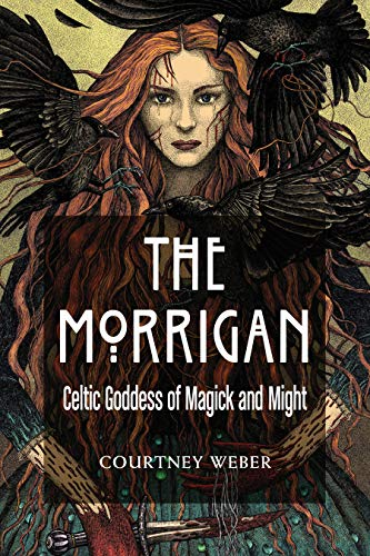 The Morrigan Book Cover
