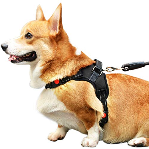 Capularsh No Pull Dog Harness,Oxford Pet Vest with Breathabl