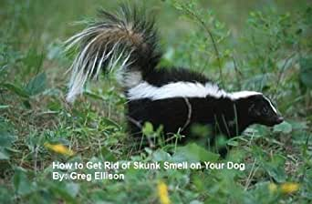 how to get rid of skunk smell on your dog kindle edition by greg ellison crafts hobbies. Black Bedroom Furniture Sets. Home Design Ideas