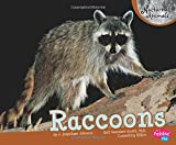 Raccoons (Nocturnal Animals)