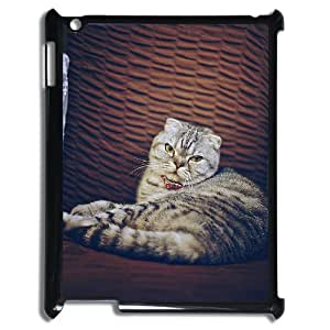 Ipad2,3,4 Cat Phone Back Case Personalized Art Print Design Hard Shell Protection LK068910