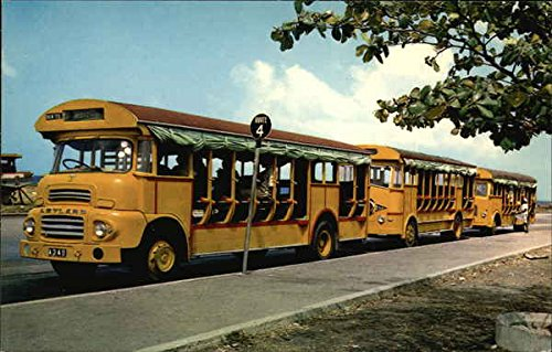 Buses in a Row Barbados, West Indies Original Vintage Postcard