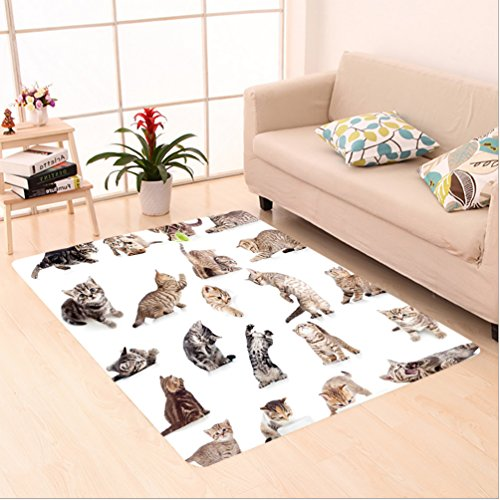 Nalahome Custom carpet llection of Funny Playful Cats on White Background Pets Animals Kitten Pattern Brown Black White area rugs for Living Dining Room Bedroom Hallway Office Carpet (5' X 7') by Nalahome