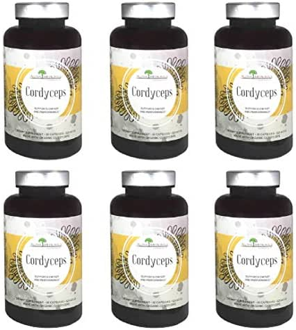 Organic Cordyceps by Aloha Medicinals - Certified Organic Cordyceps Synensis - Supports Immunity, Energy and Stamina - 525mg - 6 Bottles of 90 Vegetarian Capsules