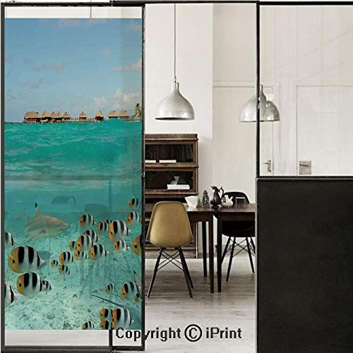 - Ocean 3D Decorative Film Privacy Window Film No Glue,Frosted Film Decorative,Blacktip Reef Shark Chasing Butterfly Fish Lagoon of Bora Bora Tahiti,for Home&Office,17.7x59Inch Aqua Yellow and Black