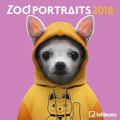zoo-portraits-2018-tierkalender-humor-mini-broschrenkalender-17-5-x-17-5-cm