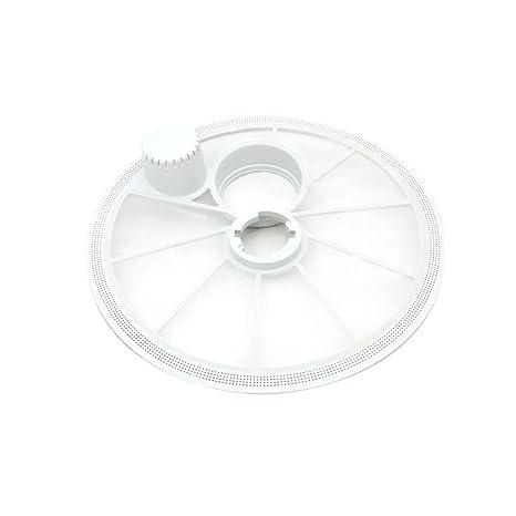 Genuine ZANUSSI lavavajillas filtro placa 50273408000: Amazon.es ...