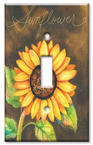 Art Plates - Single Gang Toggle OVERSIZE Switch Plate/OVER SIZE Wall Plate - - Covers Switchplate Oversize