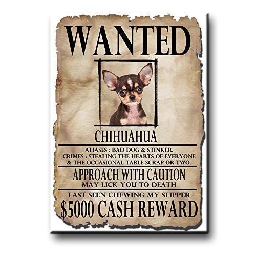 Chihuahua Wanted Fridge Magnet No 3 Funny