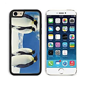 King Emperor Penguin Bird Arctic Apple iPhone 6 TPU Snap Cover Premium Aluminium Design Back Plate Case Customized Made to Order Support Ready Luxlady iPhone_6 Professional Case Touch Accessories Graphic Covers Designed Model Sleeve HD Template Wallpaper Photo Jacket Wifi Luxury Protector Wireless Cellphone Cell Phone