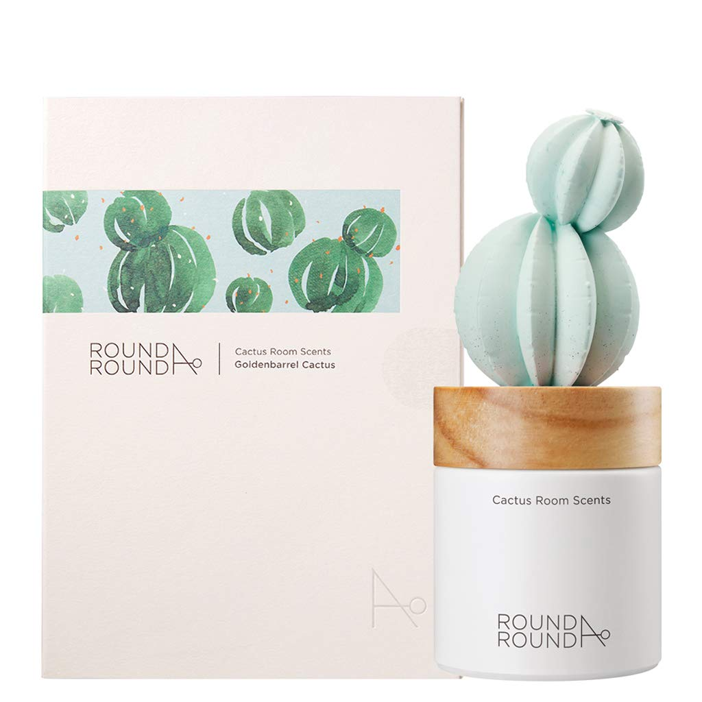 ROUND A'ROUND Cactus Room Scents 100ml / Gypsum Reed Fragrance Diffuser for Fragrant Homes, Rooms, Office, Bathroom, Living Room, Great Home Fragrance Gift (Goldenbarrel Cactus)