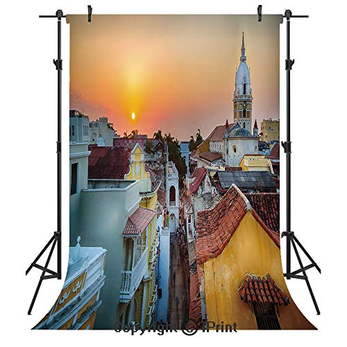 Sunset Photography Backdrops,View over the Rooftops of the Old City Cartagena Cathedral Colombian Coast Picture Decorative,Birthday Party Seamless Photo Studio Booth Background Banner 6x9ft,Multicolor