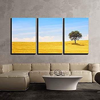 Amazon.com: wall26 - 3 Piece Canvas Wall Art - Tuscany Country ...