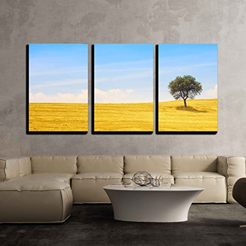 Tuscany Italy Landscape - wall26 - 3 Piece Canvas Wall Art - Tuscany Country Landscape, Olive Tree and Green Fields Montalcino, Italy, Europe - Modern Home Decor Stretched and Framed Ready to Hang - 24