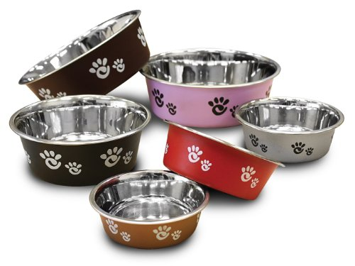 Ethical Pet Barcelona Matte and Stainless Steel Pet Dish, 16-Ounce, Raspberry