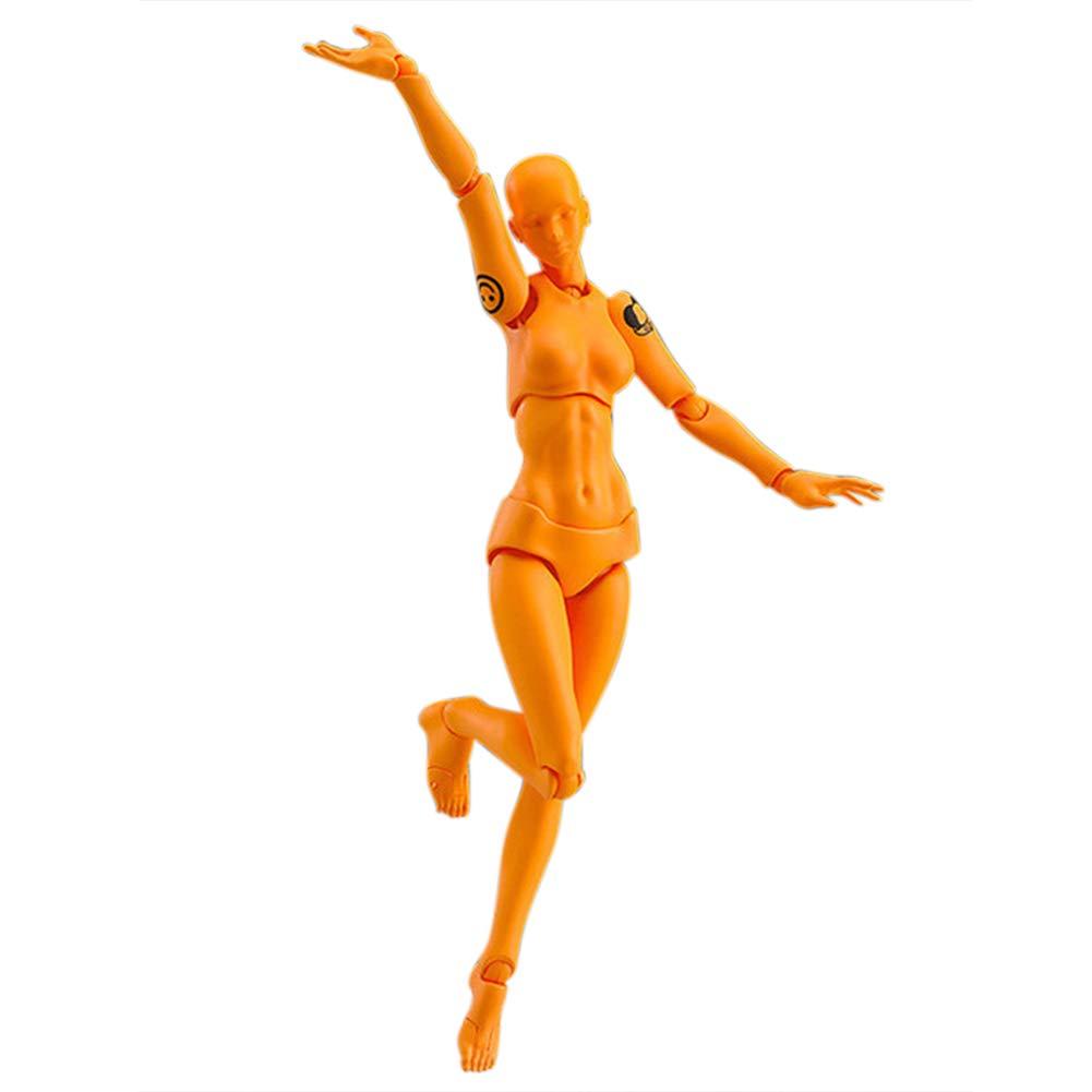 Egosy Modelos de Cuerpo Humano de PVC Mu/ñecos articulados de articulaci/ón para escaparate Figuras de acci/ón m/óviles