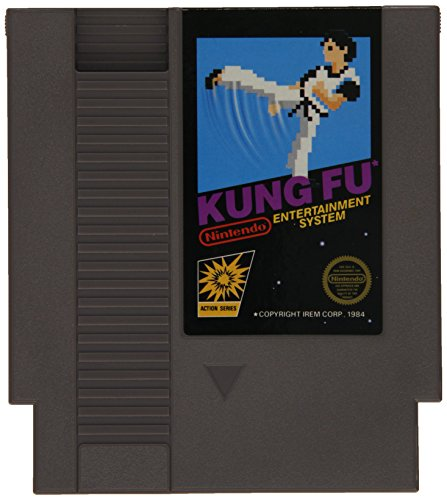 Kung Fu nintendo entertainment system