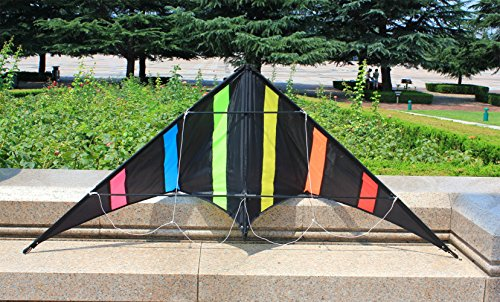 Outdoor Sports,Beach and Fun Sport Kite,Handle,Line,and Bag Included Hengda Kite-Aurora 48 inch Dual Line Stunt Kite for Kids and Adults
