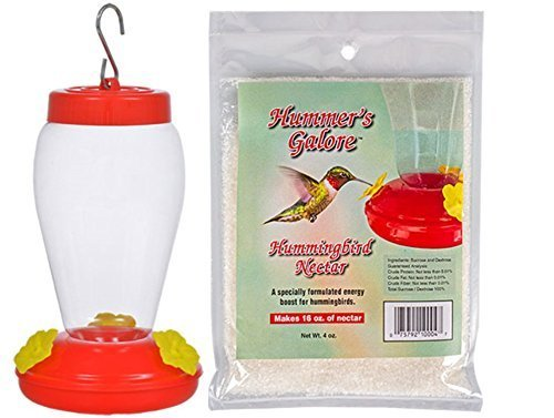 Spring Garden Garden Collection Hanging Hummingbird Bird Feeder & Nectar - 6.75 Inches 2 Piece SET
