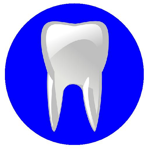 CDA Certified Dental Assistant Flashcards