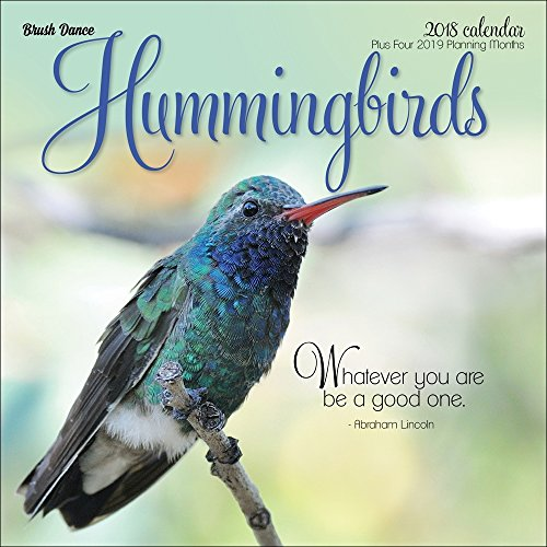 Hummingbirds 2018 Wall Calendar