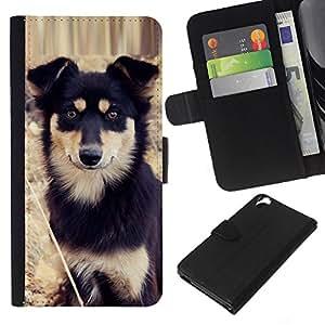 Alaskan Malamute Mastiff Puppy Dog - la tarjeta de Crédito Slots PU Funda de cuero Monedero caso cubierta de piel HTC Desire 820