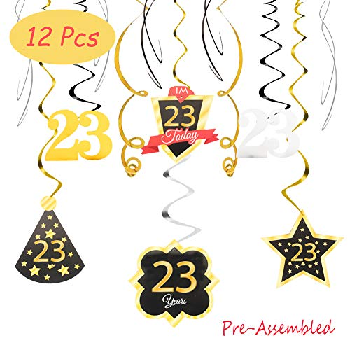 (23 Birthday Decoration Happy 23rd Birthday Party Silver Black Gold Foil Swirl Streamers I'm Twenty Three Years Old Today Birthday Hat Gold Star Ornament Party Present Supplies)
