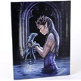 Anne Stokes Motif Water Dragon Gothique-une fée avec son bébé Dragon Tableau toile sur chassis-Plaque murale/sticker mural