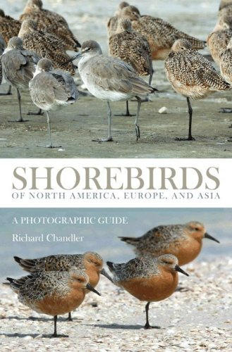 Shorebirds of North America, Europe, and Asia: A Photographic Guide ebook