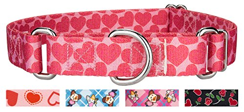 Country Brook Design | Scrolling Hearts Martingale Dog Collar - Small