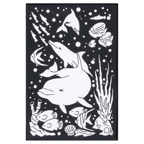 Dolphins Velvet Poster (Better Crafts VELVET POSTER WITH MARKERS DOLPHINS 6X9 (6 pack) (02512-710))