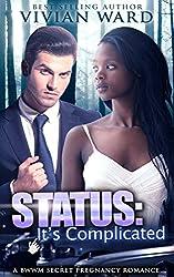 Status: It's Complicated (A Secret Baby Romance)