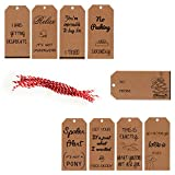 Arts & Crafts : Funny Christmas Holiday gift tags - Brown eco-friendly kraft paper holiday gift twine and tags great for the holiday, Christmas, fun gifts. 24 pcs includes twine strings