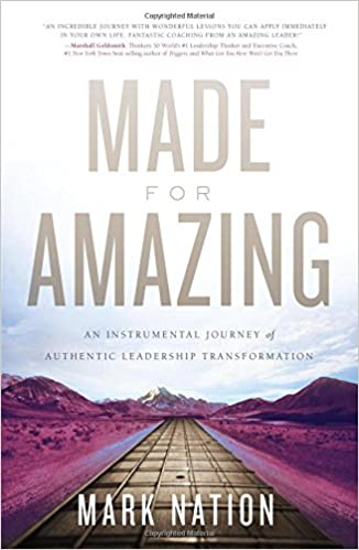 Made for Amazing: An Instrumental Journey of Authentic Leadership ...