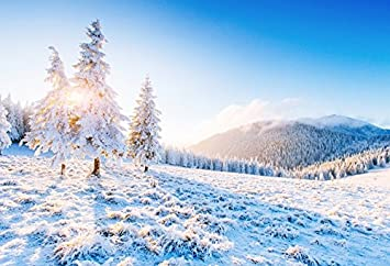 OERJU 10x8ft Winter Backdrop Winter Forest Snow Cover Path Christmas Background for Photography New Year Decor Kids Adults Xmas New Year Photo Wallpaper