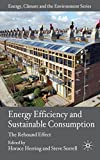 Energy Efficiency and Sustainable Consumption: The Rebound Effect (Energy, Climate and the Environment)