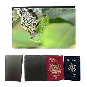 Passeport Voyage Couverture Protector // M00155034 Lagarto camaleón camuflaje // Universal passport leather cover